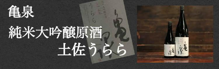 亀泉 純米大吟醸原酒 土佐麗