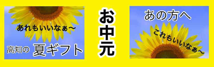 お中元・夏ギフト